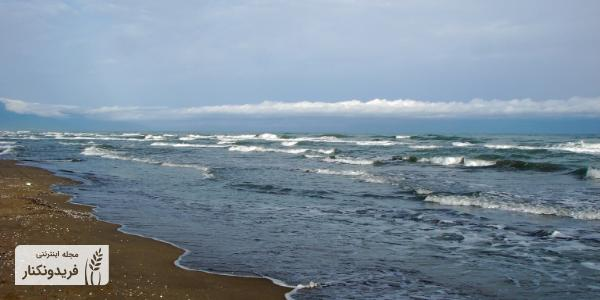 سواحل ماسه ای فریدونکنار، سواحل شنی فریدونکنار، سواحل آبی و چشم نواز فریدونکنار
