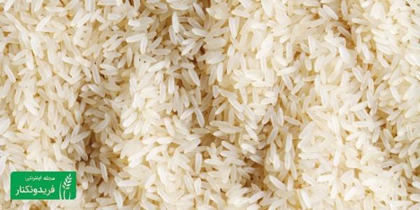 برنج پاربویل rice parboiled برنج فریدونکنار برنج ایرانی برنج طارم fereydunkenar