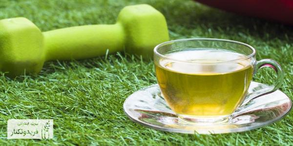 چای سبز ایرانی - فواید چای سبز - قیمت و خرید چای سبز - فروشگاه اینترنتی فریدونکنار - چای ایرانی