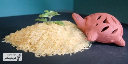 برنج پاربویل چیست و آیا سالم است؟